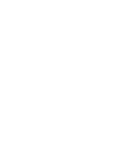 ann hagerty logo